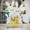 """Targa in Plexiglass Idea Regalo Pasqua Coniglietti """"Rabbit's Family Personalizzato con Foto"""""""